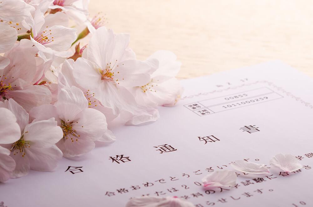 合格通知書の上の桜の花